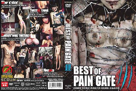 [DDSC-026] BEST OF PAIN GATE 3 総集編 2017/06/20 拷問・ピアッシング JADE GROUP