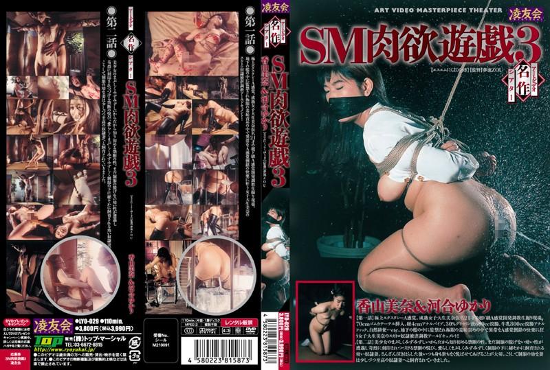 LYO-029 アートビデオ名作シアター SM肉欲遊戯 3 凌友会 2009-04-17